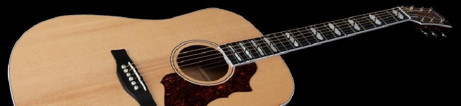 Godin Acoustic