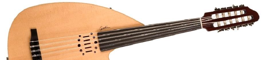 Instruments à cordes du monde