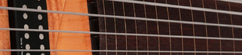 Basses 6 cordes fretless