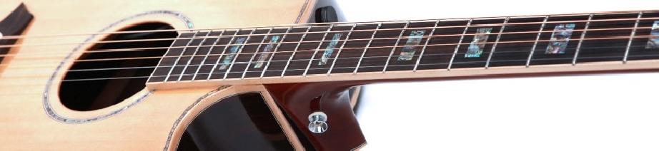 Guitares acoustiques Larry Carlton